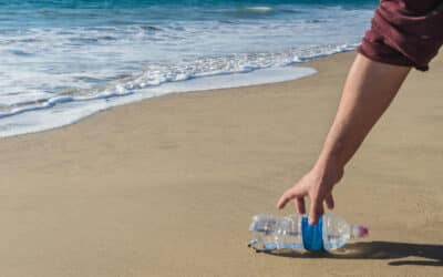 Beach Season Is Here! Join Us for Our Virtual Cleanup